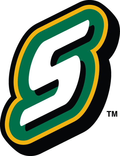 Southeastern Louisiana Lions 2003-Pres Alternate Logo v3 iron on transfers for clothing