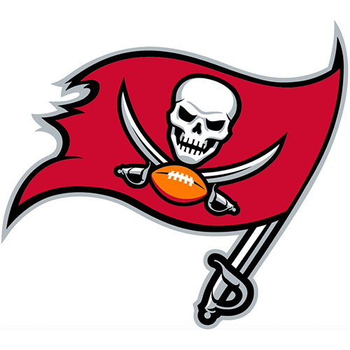 Tampa Bay Buccaneers iron ons