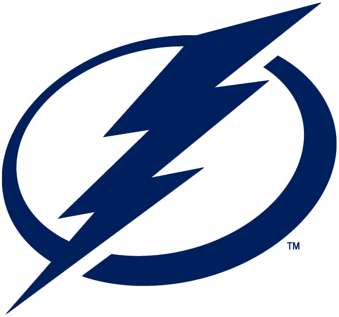 Tampa Bay Lightning 2011-Pres Primary Logo iron on transfers for clothing