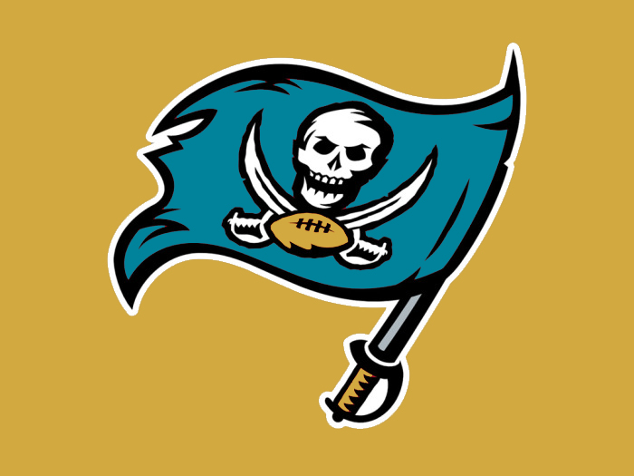 Tampa Bay to Jacksonville colors logo iron on transfers
