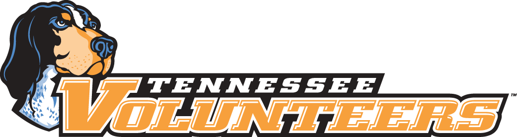 Tennessee Volunteers 2005-Pres Wordmark Logo v4 iron on transfers for clothing