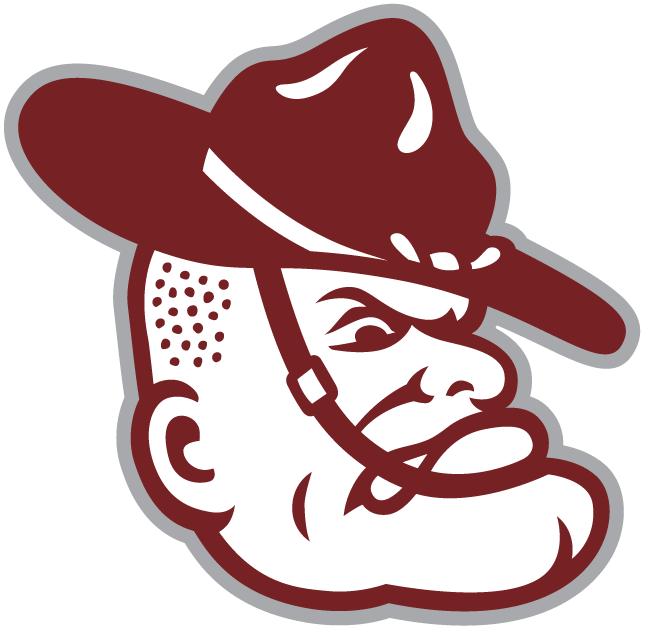 Texas A&M Aggies 2001-Pres Mascot Logo iron on transfers for clothing