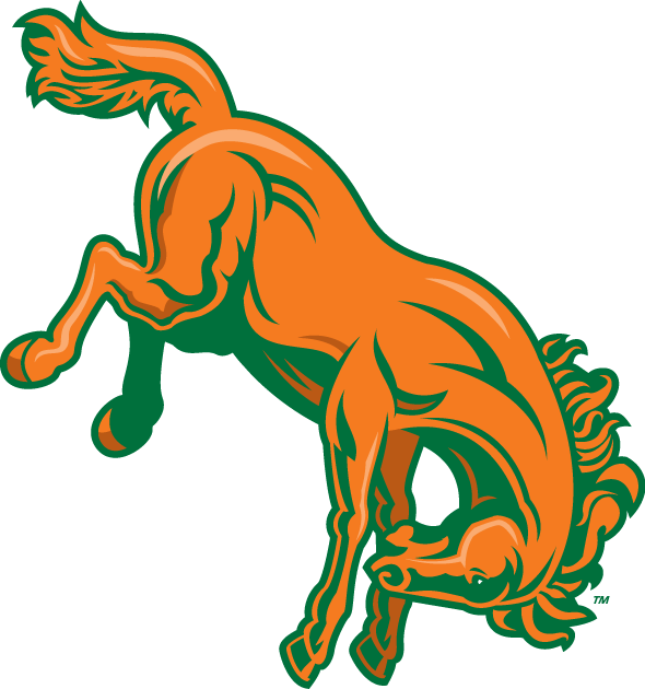 Texas-Pan American Broncs 2010-2014 Alternate Logo v2 iron on transfers for clothing