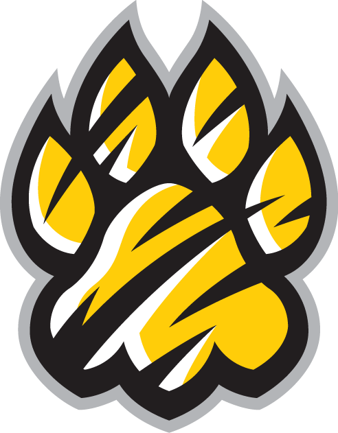 Towson Tigers 2004-Pres Alternate Logo v3 iron on transfers for clothing