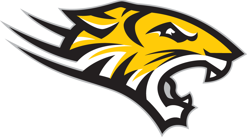 Towson Tigers 2004-Pres Alternate Logo v4 iron on transfers for clothing