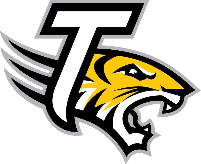 Towson Tigers 2004-Pres Alternate Logo v5 iron on transfers for clothing