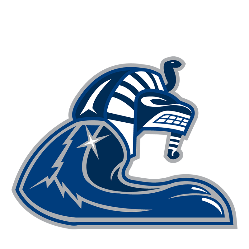 Vancouver Canucks Entertainment logo iron on transfers