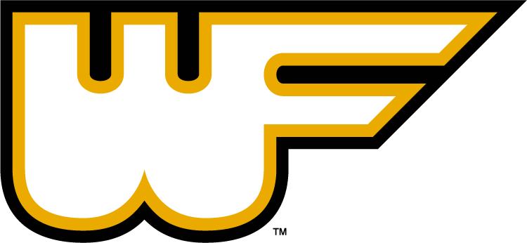 Wake Forest Demon Deacons 1977-1985 Alternate Logo iron on transfers for clothing