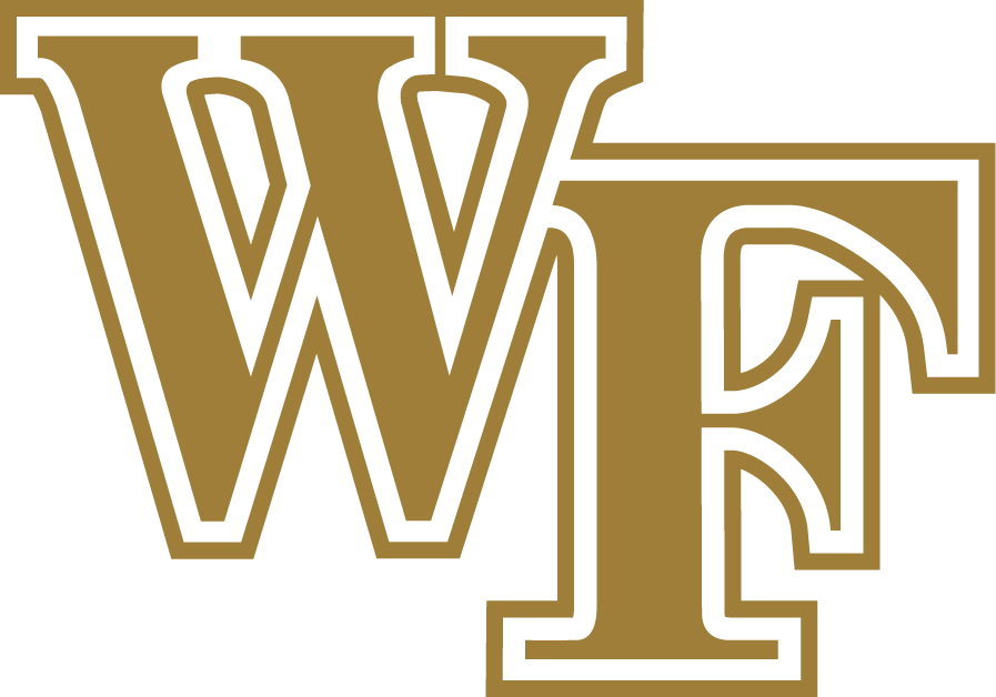 Wake Forest Demon Deacons 2007-Pres Alternate Logo iron on transfers for clothing