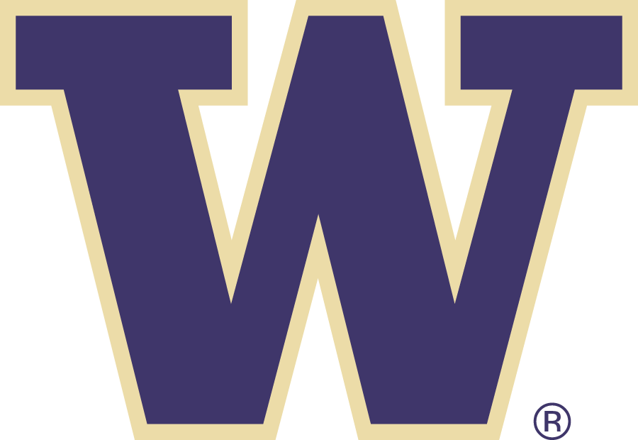 Washington Huskies iron ons