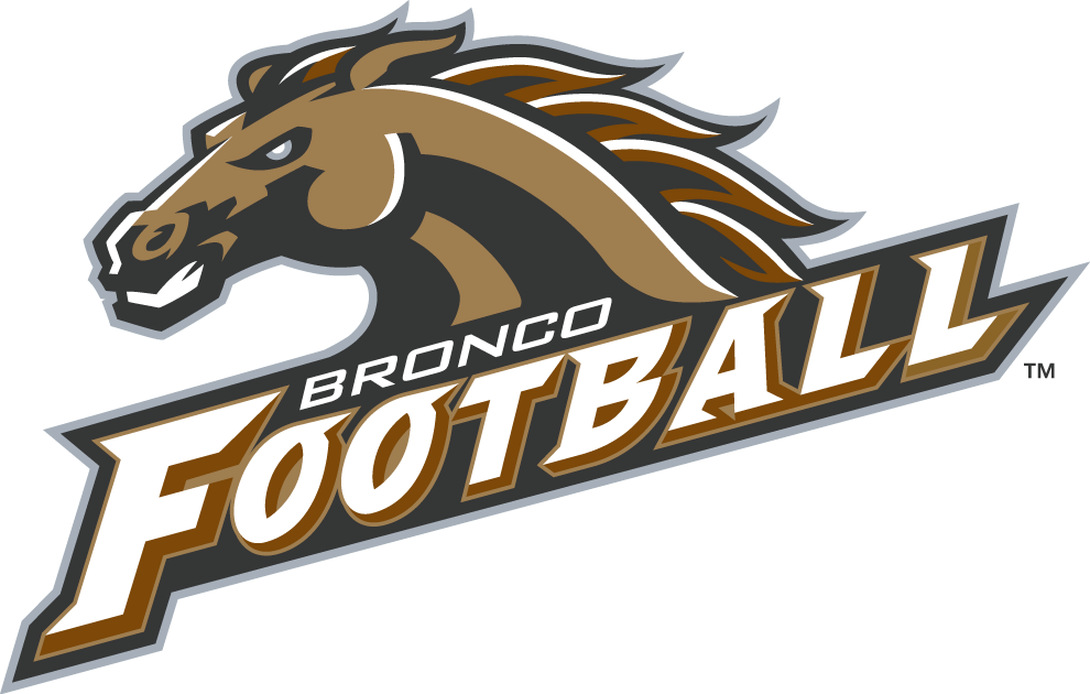 Western Michigan Broncos 1998-Pres Alternate Logo iron on transfers for clothing