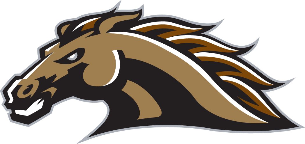 Western Michigan Broncos 1998-Pres Secondary Logo iron on transfers for clothing