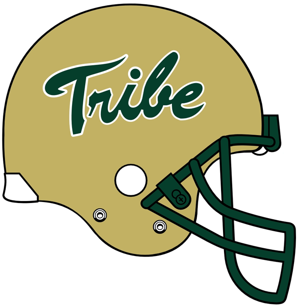 William and Mary Tribe 2009-Pres Helmet Logo iron on transfers for clothing