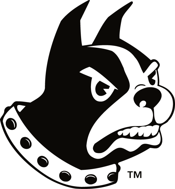 Wofford Terriers iron ons
