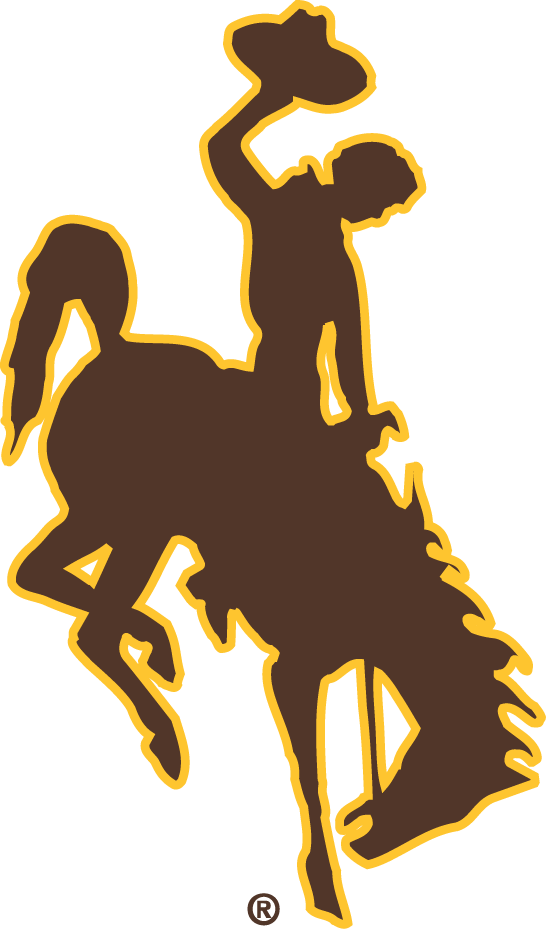 Wyoming Cowboys iron ons