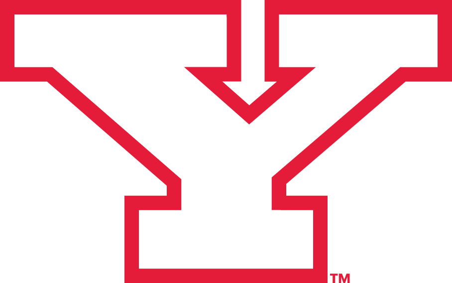 Youngstown State Penguins 1993-Pres Alternate Logo v2 iron on transfers for clothing