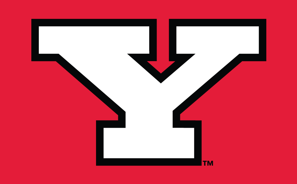 Youngstown State Penguins 1993-Pres Alternate Logo v3 iron on transfers for clothing