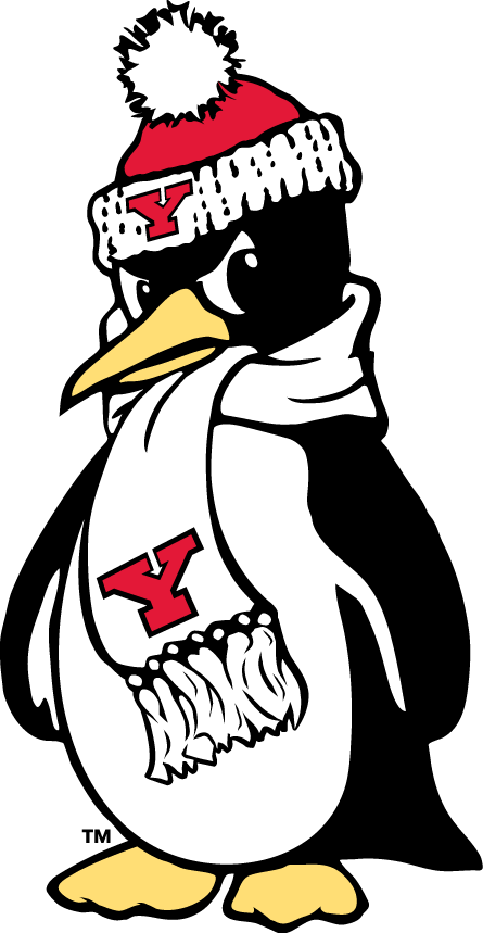 Youngstown State Penguins 1993-Pres Alternate Logo v4 iron on transfers for clothing