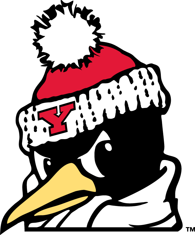 Youngstown State Penguins 1993-Pres Alternate Logo v6 iron on transfers for clothing