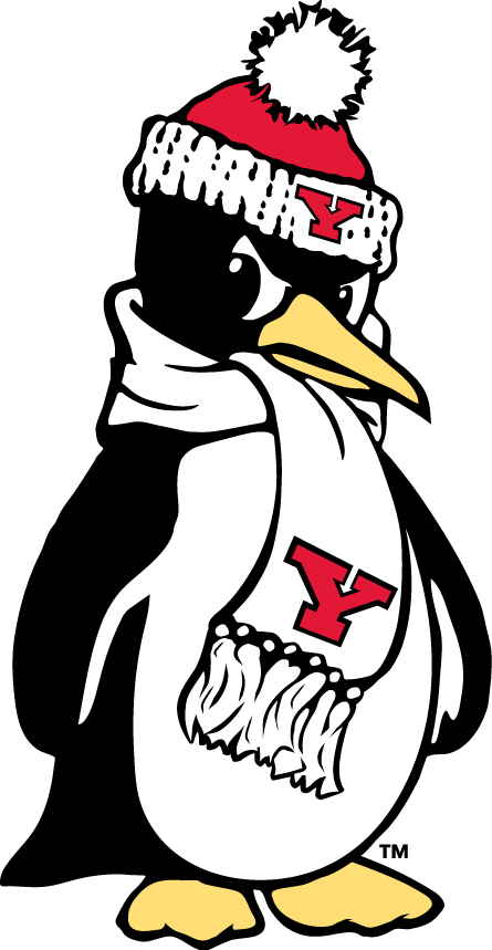 Youngstown State Penguins 1993-Pres Alternate Logo v7 iron on transfers for clothing