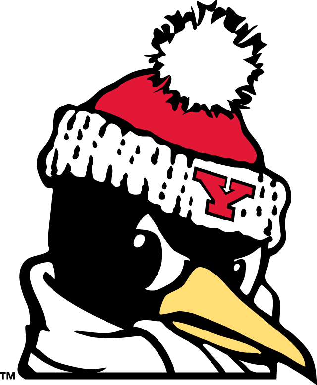 Youngstown State Penguins 1993-Pres Alternate Logo v9 iron on transfers for clothing