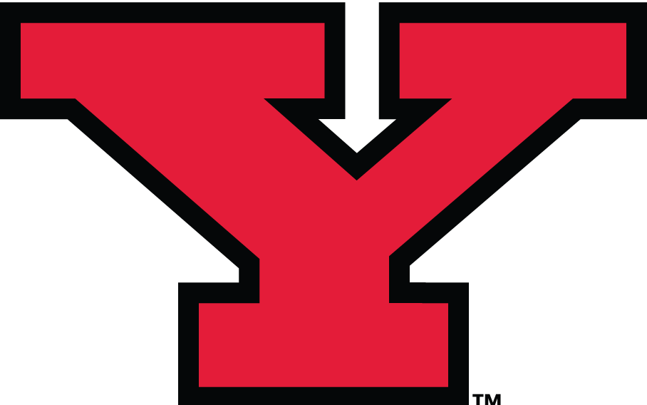 Youngstown State Penguins 1993-Pres Alternate Logo iron on transfers for clothing