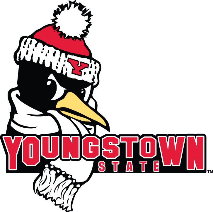 Youngstown State Penguins 2006-Pres Secondary Logo iron on transfers for clothing