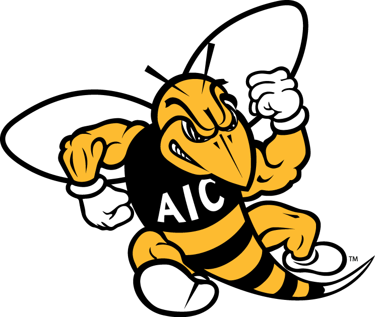 AIC Yellow Jackets iron ons