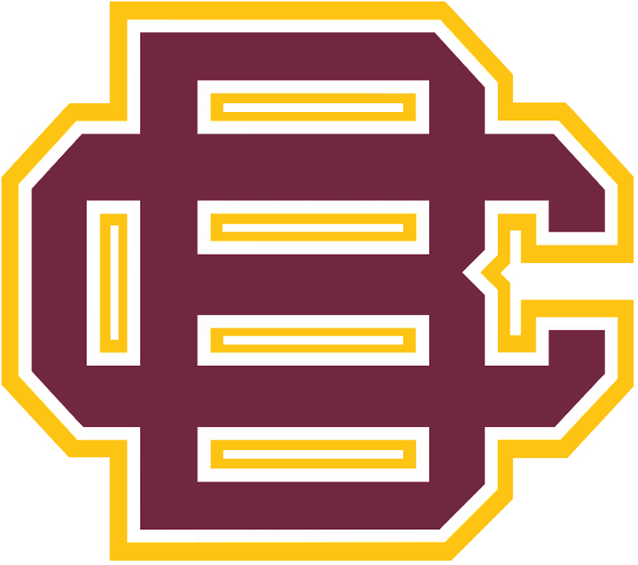 Bethune-Cookman Wildcats iron ons