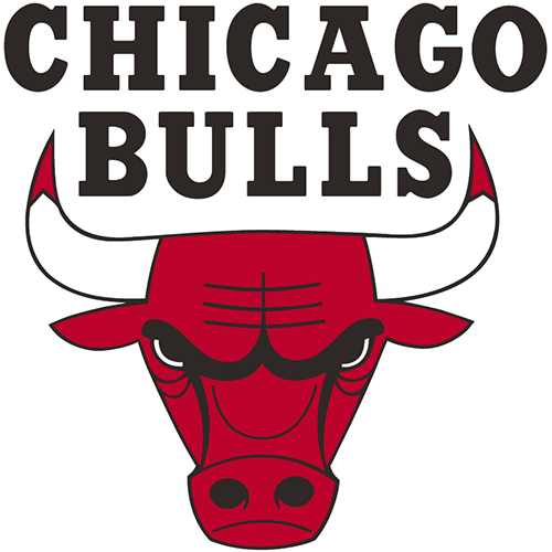 Chicago Bulls iron ons