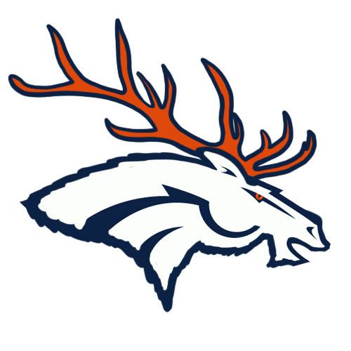 Denver Broncos Canadian Logos iron on transfers
