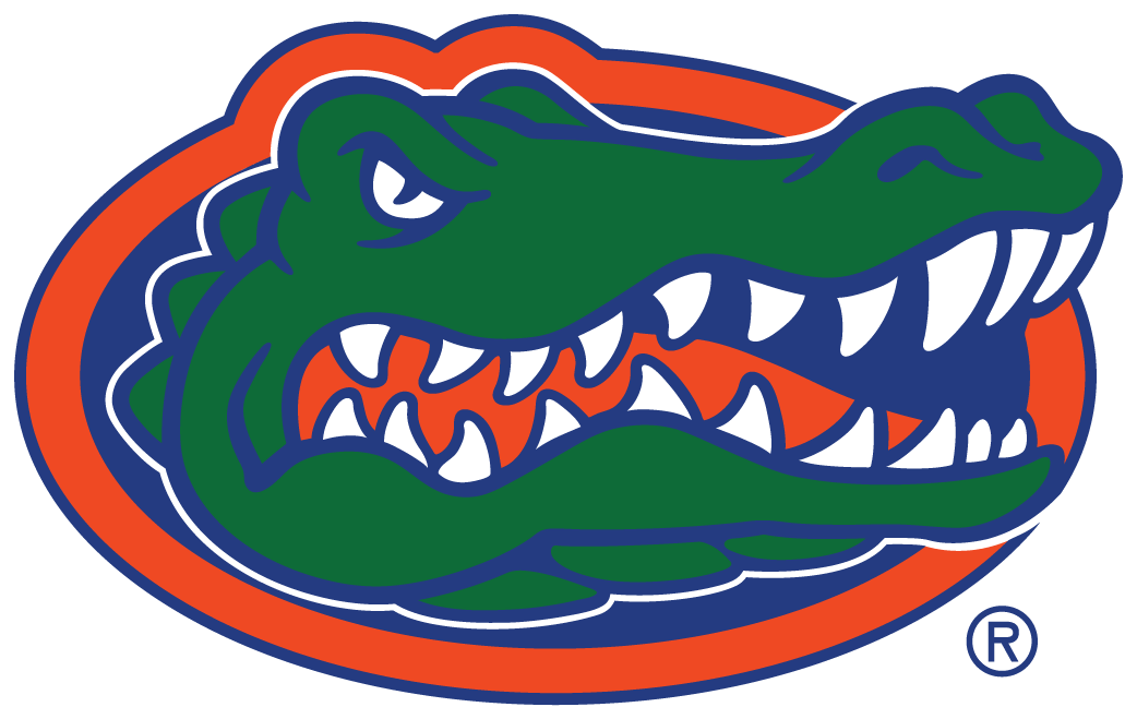 Florida Gators iron ons