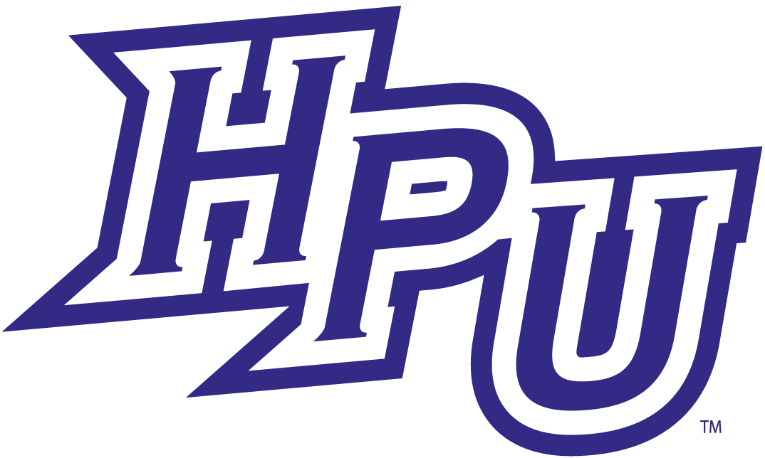 High Point Panthers iron ons