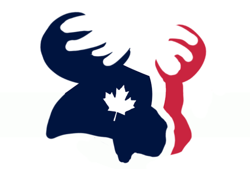 Houston Texans Canadian Logos iron on transfers