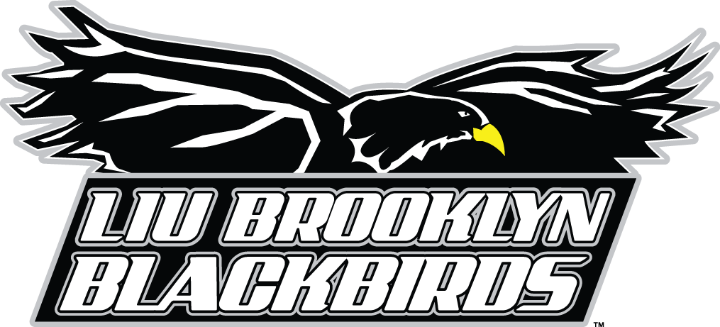 LIU-Brooklyn Blackbirds iron ons