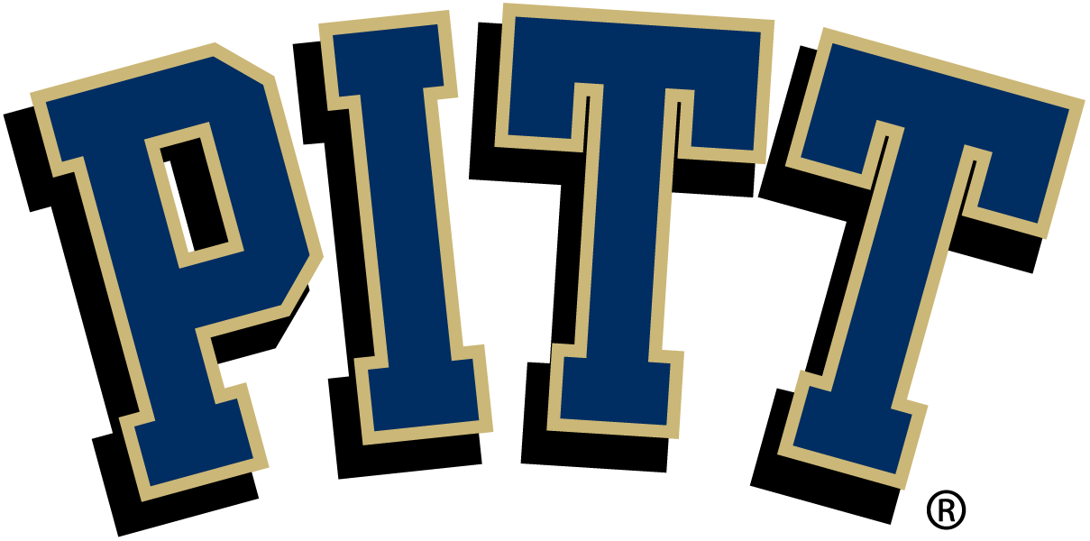Pittsburgh Panthers iron ons