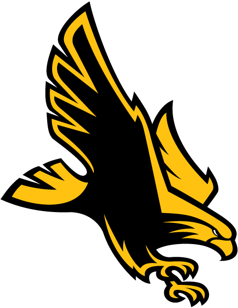 Southern Miss Golden Eagles iron ons
