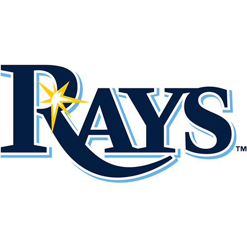 Tampa Bay Rays iron ons