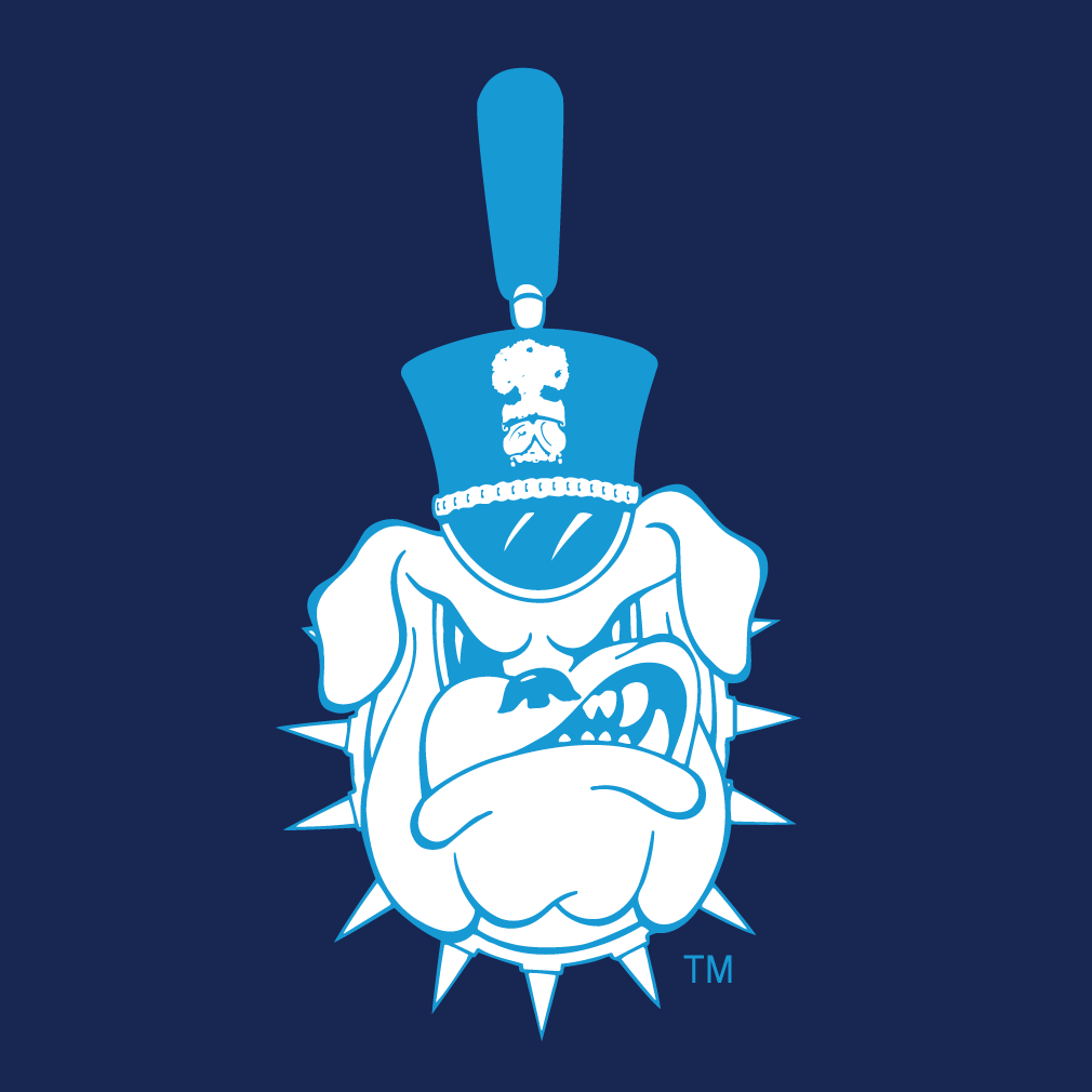 The Citadel Bulldogs iron ons